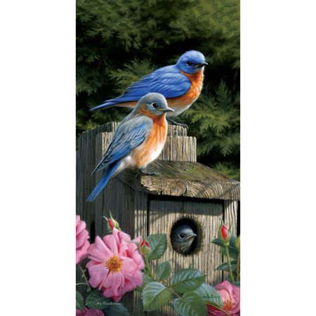 Custom Decor Art Panel - Bluebird House