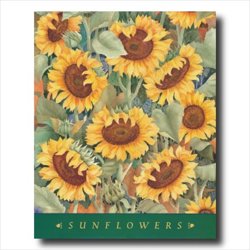Checkerboard Sunflower Country Wall Picture Art Print