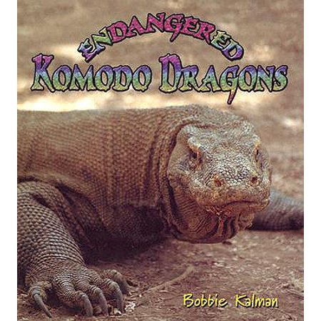 Endangered Komodo Dragons -