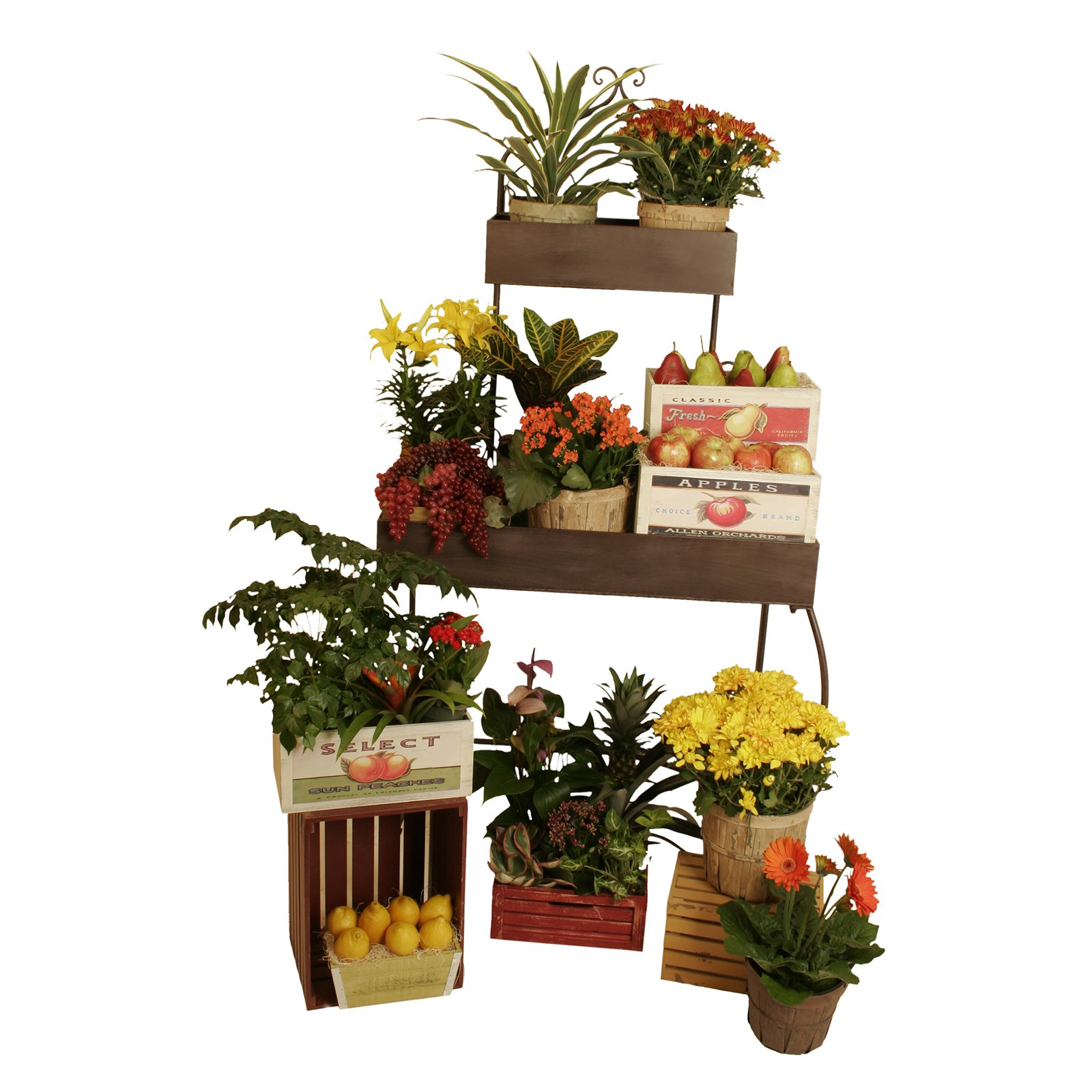 Wald Import Metal 2 Shelf Tiered Plant Stand