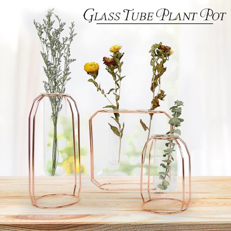 Hanging Glass Tube Vase Plant Pot Metal Stand Flower Bottle Container Hydroponic Wedding Christmas Decor Flower Pot ()