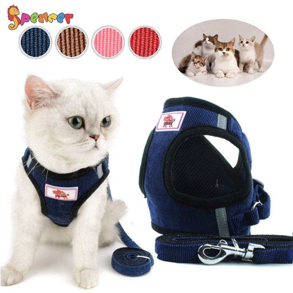 Padded Dog Vest Harnesses for Puppy Small Dogs//Cats Cat Dog Training Collar Pink,XS,S Pet Club No Pull Dog//Cat Harness and Leash Set for Walking