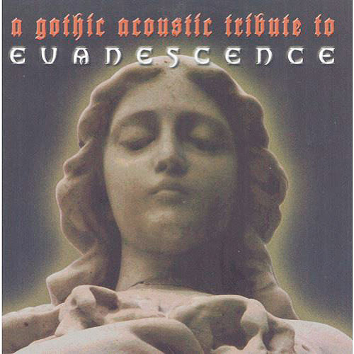 Gothic Acoustic Tribute To Evanescence