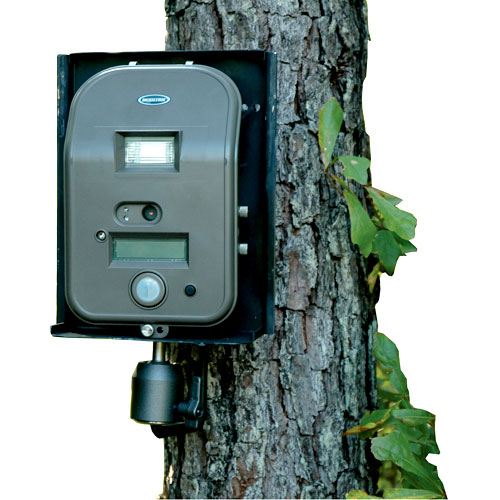 Moultrie Game Camera Tree Mount