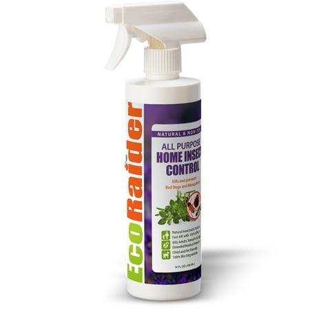 EcoRaider All Purpose Home Insect Control 16 OZ, Fast Kill & Lasting Prevention, Natural & Non-Toxic