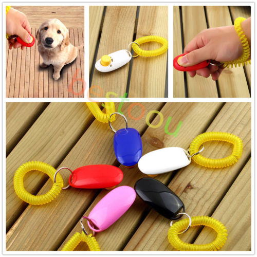 White Pet Dog/Cat Clicker Training Obedience Agility Trainer Aid Wrist Strap Train
