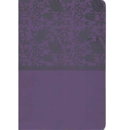 Holman Rainbow Study Bible  New International Version  Purple  Leathertouch