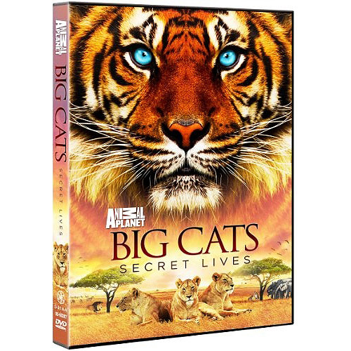Big Cats: Secret Lives by DISCOVERY CHANNEL