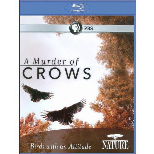 Nature: A Murder Of Crows (Blu-ray)