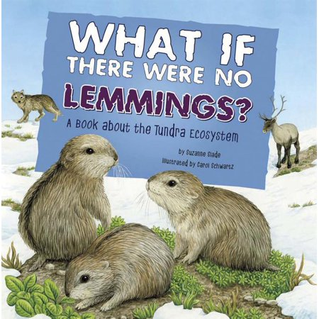Food Chain Reactions: What If There Were No Lemmings?: A Book about the Tundra Ecosystem (Paperback)