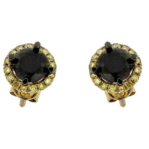 10k Yellow Gold 1 4/5ct TDW Round Black and Yellow Diamond Stud Earrings