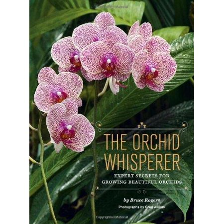 The Orchid Whisperer   Expert Secrets For Growing Beautiful Orchids