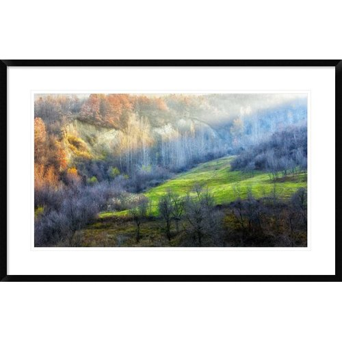 Global Gallery 'November Colors' by Adrian Popan Framed Photographic Print