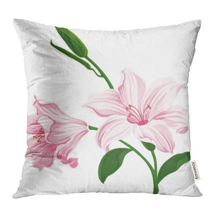 YWOTA Green Outline Blooming Lily Flowers Floral Wedding Colored Silhouette White Pink Pillow Cases Cushion Cover 16x16 - Lily Silhouette