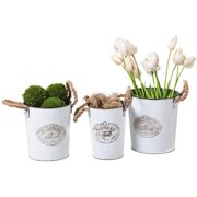 Evergreen White Metal Planters - Set of 6