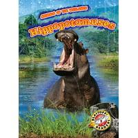Animals of the Wetlands: Hippopotamuses (Hardcover)