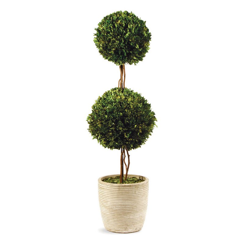 Napa Home And Garden Preserved Boxwood Double Sphere Topiary