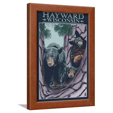 Hayward, Wisconsin - Bear and Cubs in Tree Framed Print Wall Art By Lantern Press