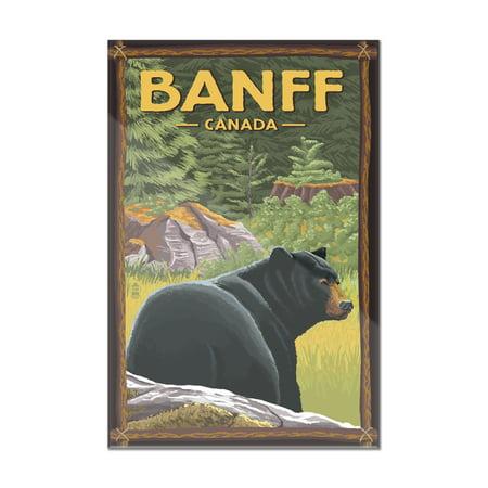 Banff, Alberta, Canada - Black Bear in Forest - Lantern Press Artwork (8x12 Acrylic Wall Art Gallery