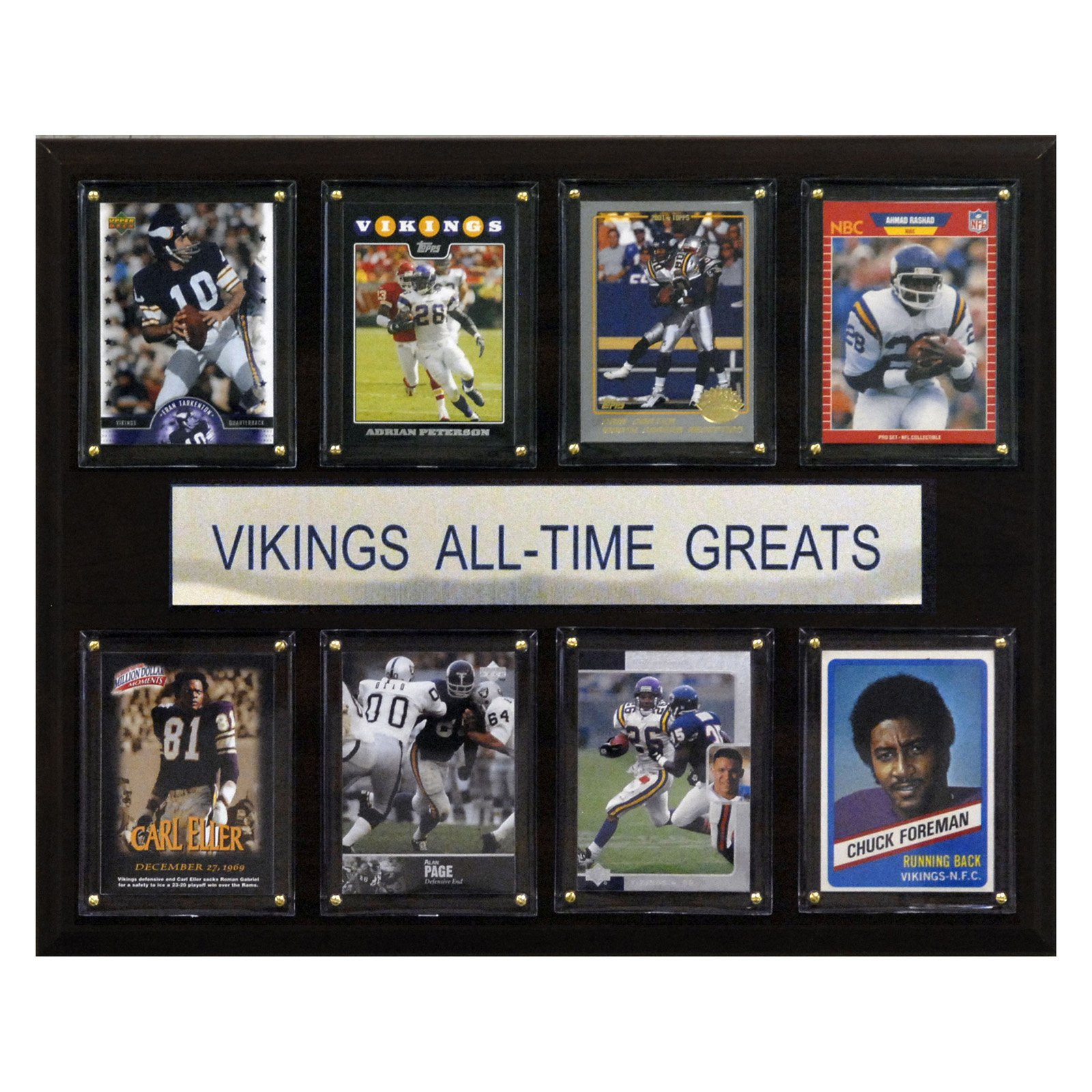 C&I Collectables NFL 12x15 Minnesota Vikings All-Time Greats Plaque