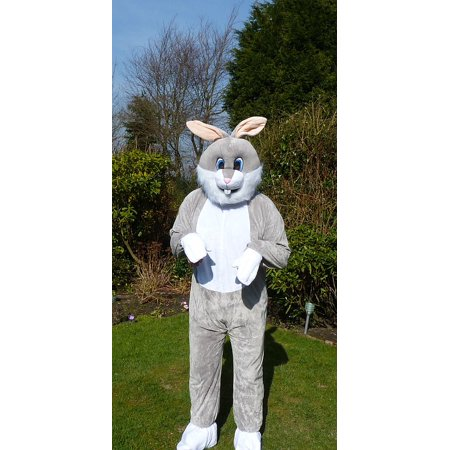 LAMINATED POSTER Easter Bunny Costume Fun Fluffy Rabbit Fancy Dress Poster Print 24 x 36 (Party City Easter Bunny Costumes)