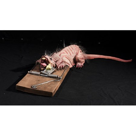 Halloween Animated Rat Trap