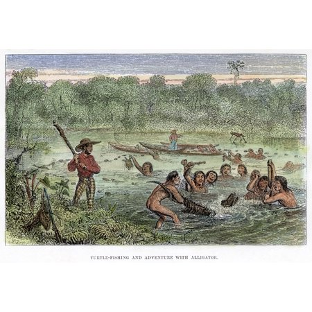 Henry Walter Bates N(1825-1892) At Left Holding A Club Watching Amazonian Native Indians Capturing Turtles And A Cayman Wood Engraving From Bates The Naturalist On The River Amazons 1863 Poster Print