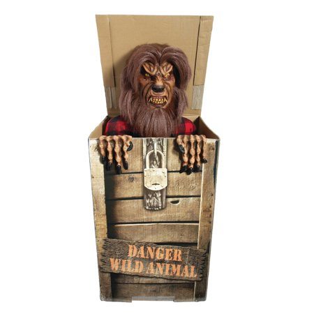 Moonlight Werewolf in the Box Animated Prop