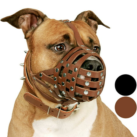 CollarDirect PitBull Dog Muzzle Leather AmStaff Muzzles Staffordshire Terrier Secure Basket, Brown (Dog Basket Muzzle)
