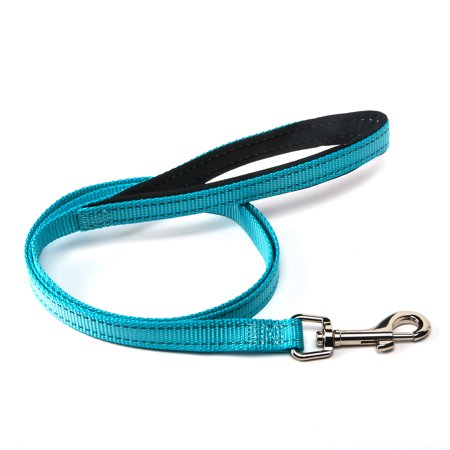 Vibrant Life Reflective Teal Comfort Dog Leash, Medium, 4 ft, 5/8 in