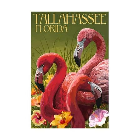 Tallahassee, Florida - Flamingos Print Wall Art By Lantern Press - Party City In Tallahassee Florida