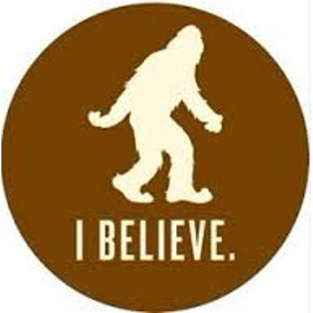 Yeti ' I Believe ' Decal, 1 Premium Yeti Great Divide Sticker By Great  Divide Brewery,USA