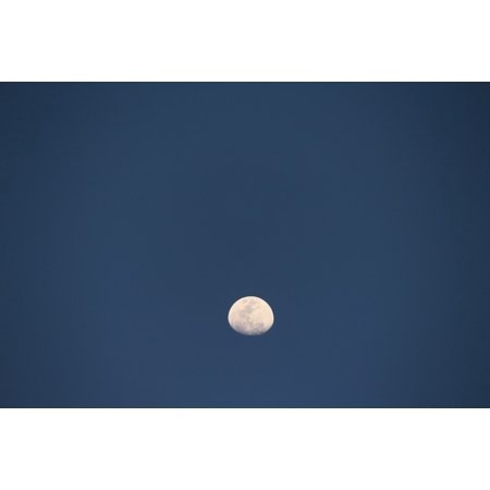 Halloween Night Moon (LAMINATED POSTER Blue Night Light Sky Halloween Moon Dark Black Poster Print 24 x)