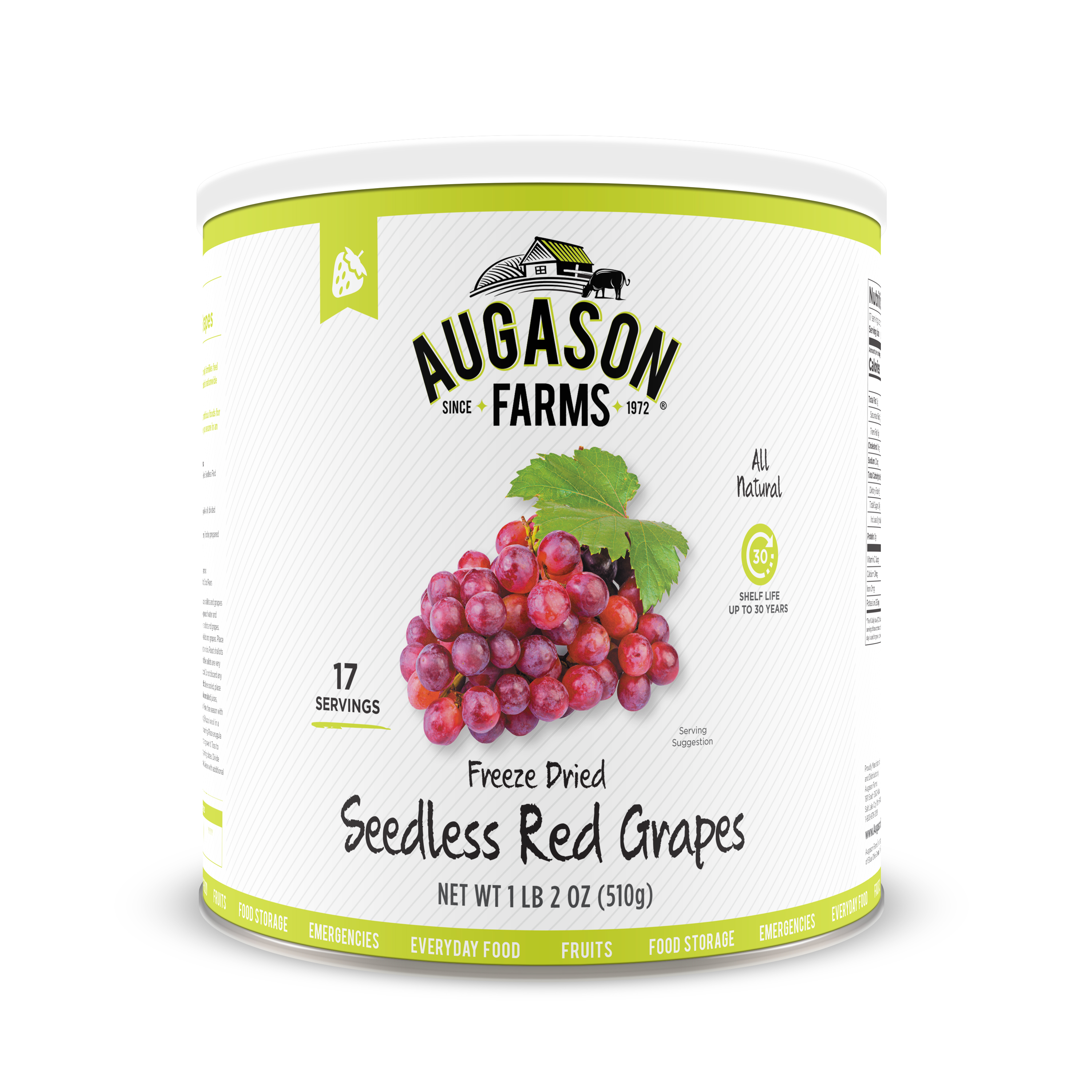 Augason Farms Freeze Dried Seedless Red Grapes 1 lb 2 oz No. 10 Can by Blue Chip Group