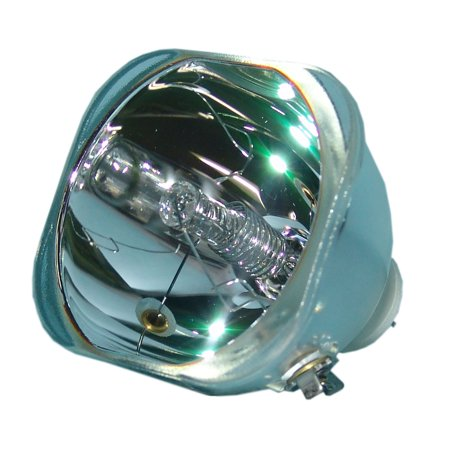 Lutema Economy for Acer PD322 Projector Lamp with Housing - image 5 de 5
