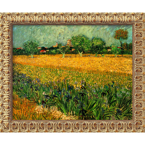 Amanti Art 'View of Arles with Irises' by Vincent Van Gogh Framed Painting Print