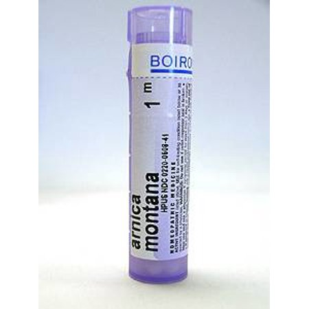 Boiron Arnica Montana Homeopathic Medicine Support Bruises And Muscle Soreness 1 M 80 Pellets