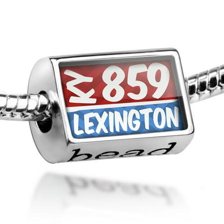 Bead 859 Lexington, KY red/blue Charm Fits All European Bracelets - The Party Store Lexington Ky