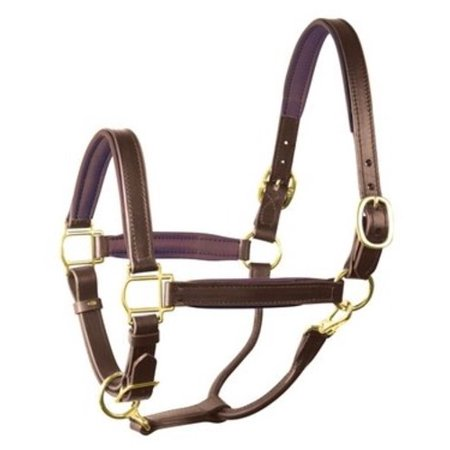 Perri's Soft Padded Leather Halter, Havana/Brown, Cob