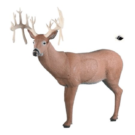 Rinehart Targets 157 30 Point Buck Self Healing Archery Deer Hunting Target