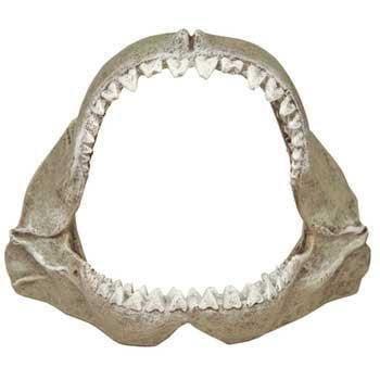 Blue Ribbon Pet Products Resin Aquarium Ornament - Great White Shark Jaws Small, 6 L x 3.5 D x 5 H Inch ()