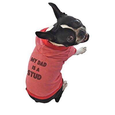 ruff ruff and meow dog hoodie, my dad is a stud, red, extra-large