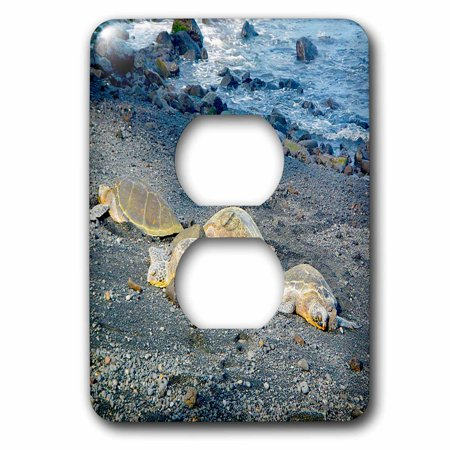 3dRose Punaluu Beach Black Sand Beach Green Sea Turtles - 2 Plug Outlet Cover