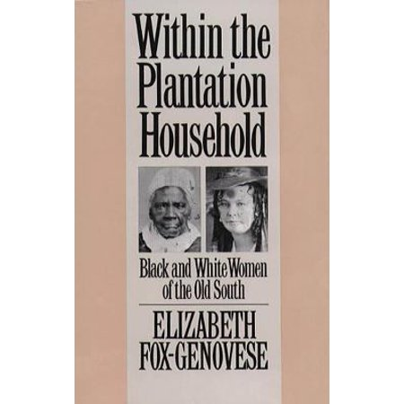 Within The Plantation Household  Black And White Women Of The Old South
