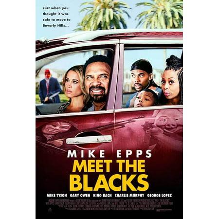 Meet The Blacks  2016  27X40 Movie Poster