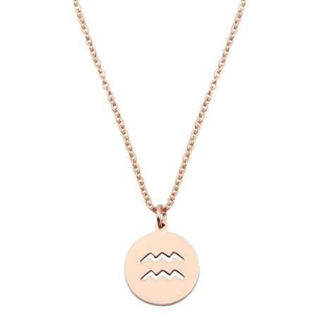 Zodiac Pendant Necklace Rose Gold Disc Horoscope Necklace Birthday Gift (Aquarius )