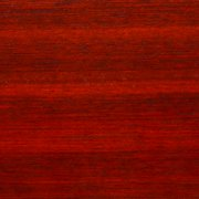 "Single Slat of Bloodwood 1/4"" x 3/4"" x 16"""