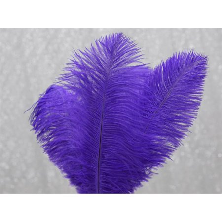 Balsacircle 12 Pcs 13 15 Long Authentic Ostrich Feathers