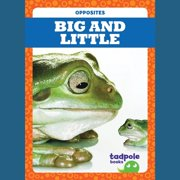 Big and Little - Audiobook