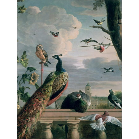 Palace of Amsterdam with Exotic Birds Peacock Bird Animal Painting Print Wall Art By Melchior de